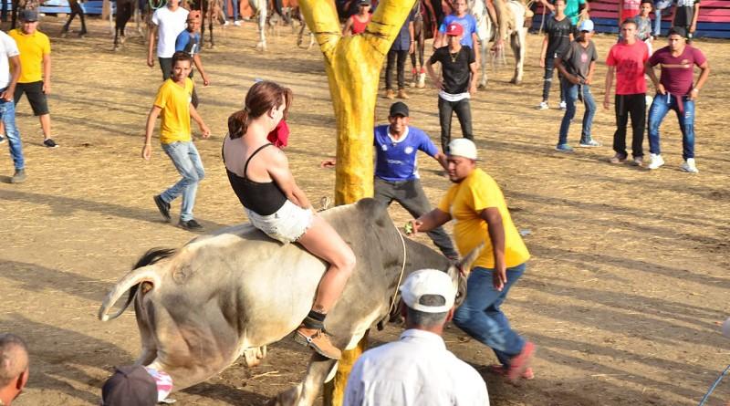 Una dama jinetea al toro durante la monta taurina