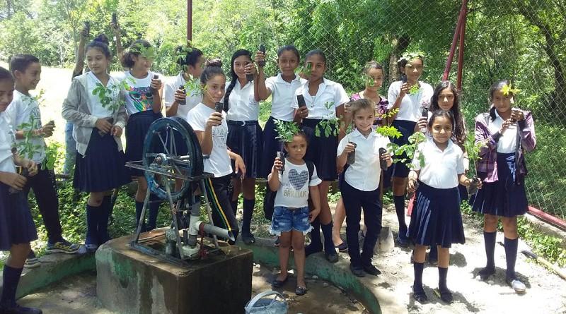 Escolares de La Palma con su arbolito en mano se disponen a la siembra