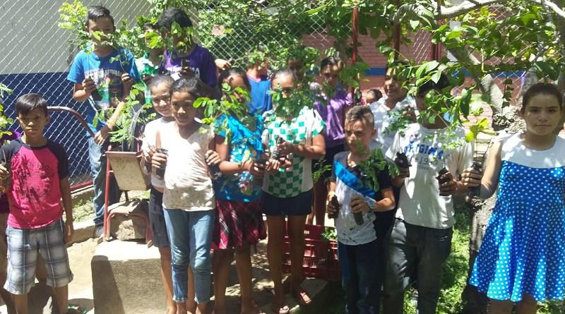 En la comunidad Santa Bárbara El Sauce niños de la escuela de la localidad marchan a la siembra de árboles