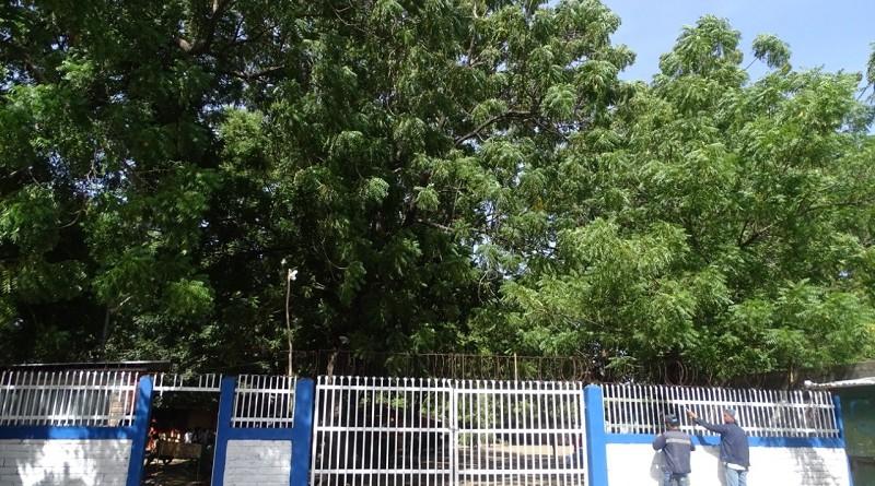 Un retoque de pintura en el portón del centro escolartoque de
