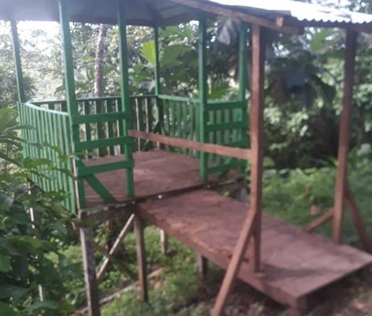 Parque natural de Nueva Guinea fue objeto de mejoras