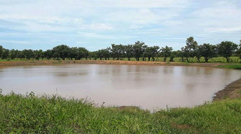 Cosecha de agua en Somotillo  para  la agricultura en las comunidades Los Balcones y El Caimito