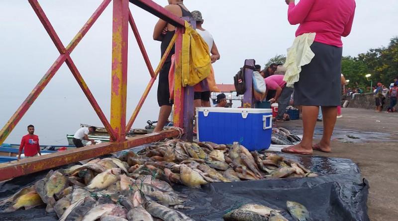 El bregar diario de la pesca para auto consumo y venta de excedentes
