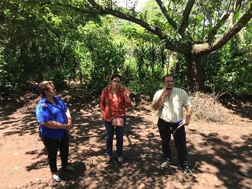 En el parque natural, adyacente está la lotificación  del programa Bismarck Martínez