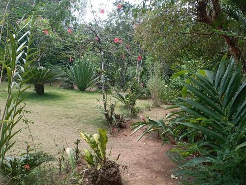El patio más limpio en El Coral