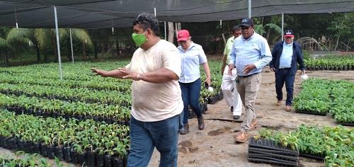 Establecimiento de viveros  de hortalizas en comunidad Rafaela Herrera en El Realejo