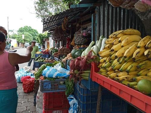 la producción y disponibilidad de alimentos, vitales para la vita humana