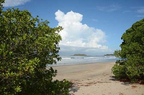Punta Teonoste lugar de desove de tortugas