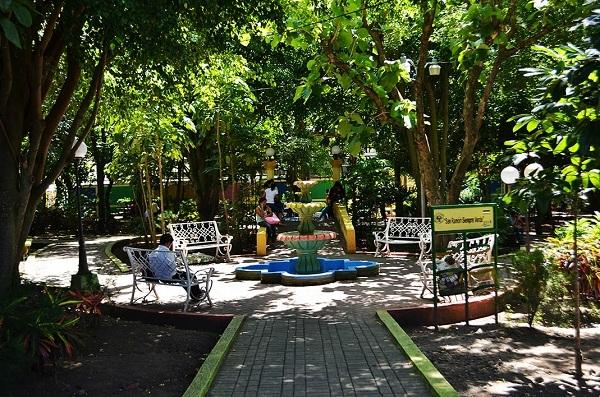 Parque central (archivo)