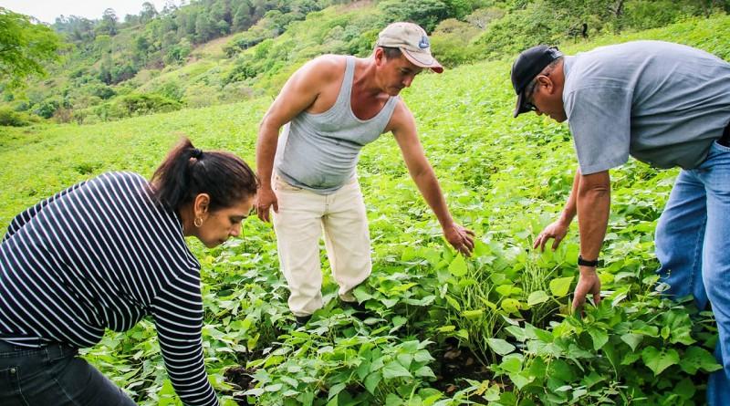 La alcaldesa del Sauce, Rosa Amelia Valle con productores de la comarca El Ocotal