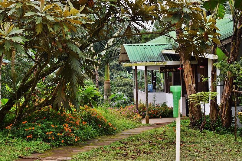 Kilimanjaro: También privada, es interesante para conocer todo el proceso productivo del café de alta calidad que allí se  produce, en medio de un agradable clima. Es la oportunidad de conocer también técnicas de ordeño y crianza de peligüey y sobre el proceso de generación de energía hidroeléctrica.