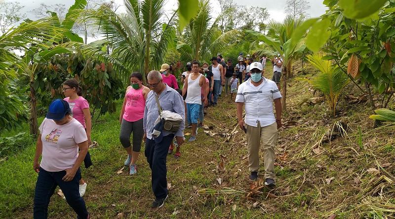 Tour  de campo cacaotero