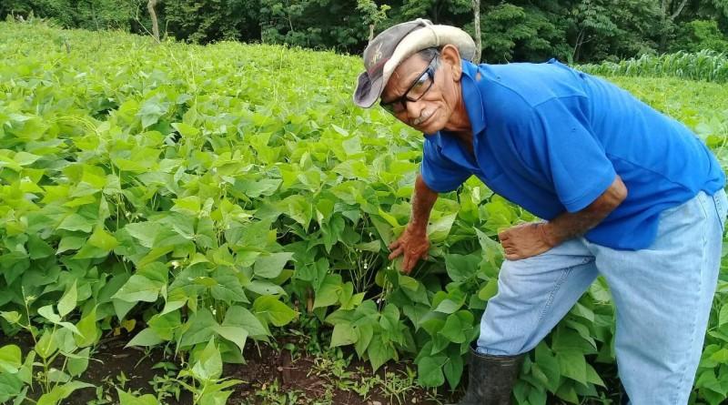 Producción agropecuaria sigue con buen crecimiento, dice Ministro de Hacienda