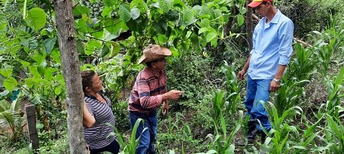 Alcalde y vice alcaldesa  de San Lorenzo,   Marcos Antonio Sandoval Mejia y Mercedes Del Socorro Suazo  visitan a un productor de maiz y frijoles en la comunidad  El Aguacate