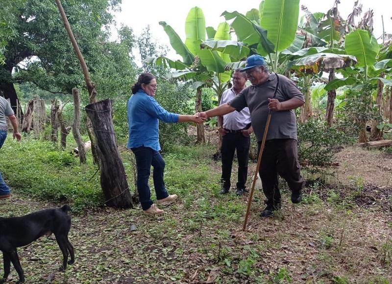 Después estuvo en el platanal de Santo Pastor Meza, productor de musáceas en 1.5 manzanas, área que en la siembra próxima será de 2.5 manzanas.En cuanto a la comercialización de plátanos dijo sentirse satisfecho lo mismo que con las obras y avances del gobierno local.