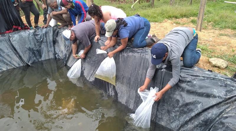 Movimiento Gurdabarranco inaugura el primer estanque de criadero de tilapia en la comunidad Terciopelo en Rosita