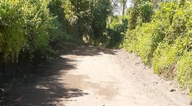 La alcaldía de La Concepción mejoró 4.4 kilómetros de caminos en las comunidades   Loma Negra y Palo Solo