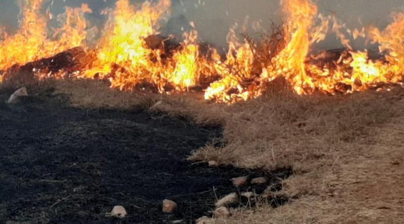 Incendio ocurrido el año pasado en la comarca San Pedro, Hato Grande  (foto archivo)