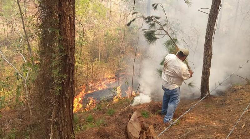 Brigadista combatiendo incendio en Santa María de pantasma en abril pasado