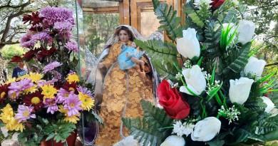 Venerada imagen de La Virgen de Los Remedios-Según la tradición apareció en el Río  hace más de 300 años