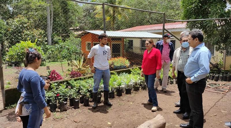Un vivero muy cuidado por Erick Rocha y Heidi Dávila proporciona insumos forestales y ornamentales para plantar en los espacios públicos.