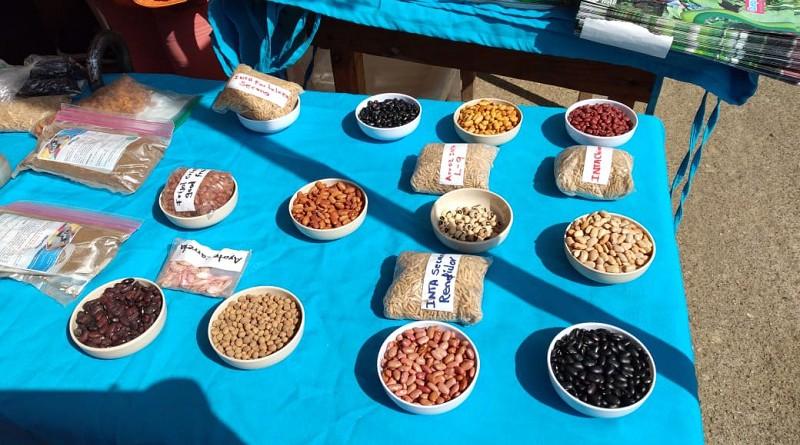 Gobierno local de Waspam e instituciones rectoras de la producción promueven feria de apoyo a protagonistas agropecuarios